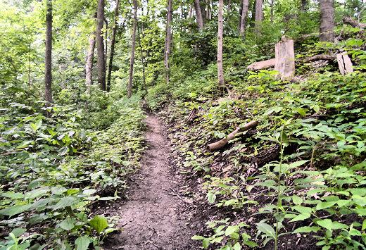 boyce mayview park trail