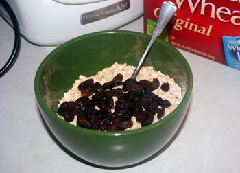 raisins on oats