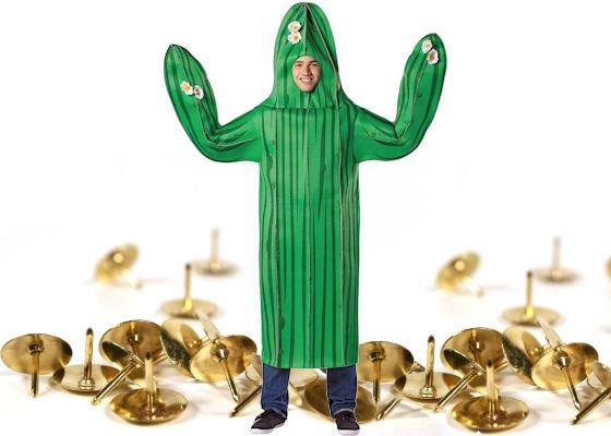 prickly cactus costume