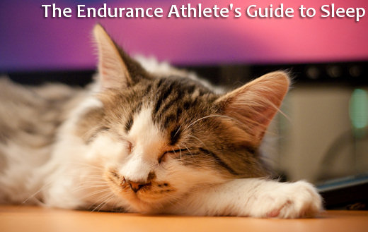 sleepy kitty represents tired endurance athlete