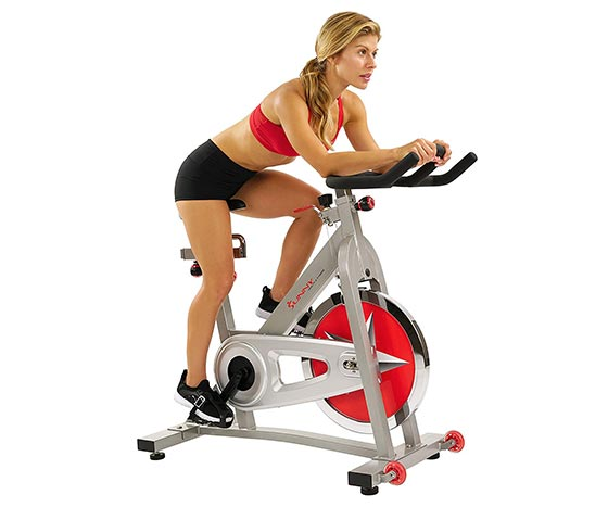 sunny health and fitness indoor bike SF-B901