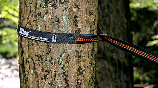 eno atlas strap looped on tree