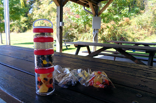 gostak on picnic table