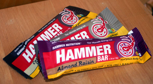 hammer nutrition energy bar