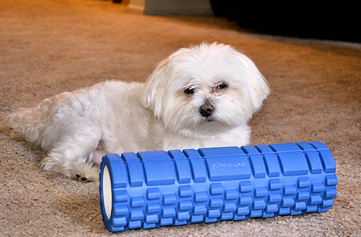 max with accupoint foam roller